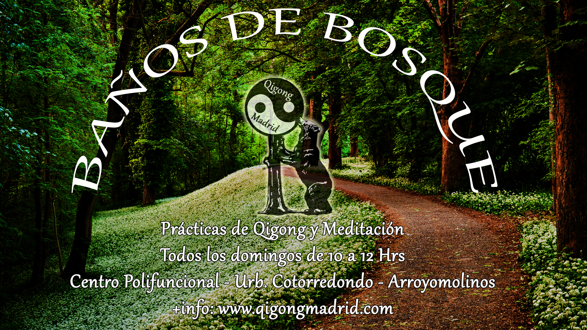 Qigong Madrid